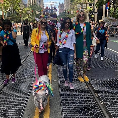 SF Pride Shanti/PAWS Contingent